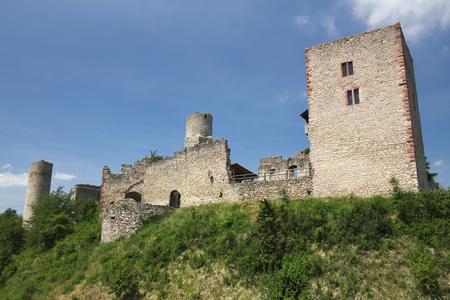 ruin: Castle Ruin Brandenburg on a sunny day.