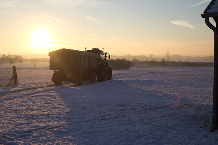 snowy field: Tractor driving over snowy field into the sunset.