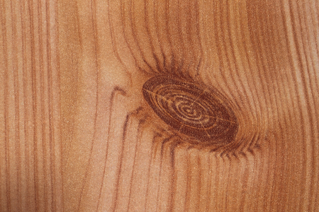 Macro shot of wood grain usable as texture or background.