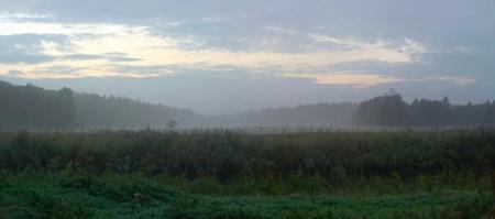 greifswald: Panoramic view of swamp in dusk near Greifswald, Germany.