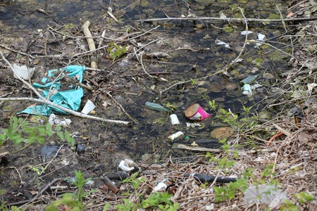 rotting: Rotting pond filled with waste and packaging.