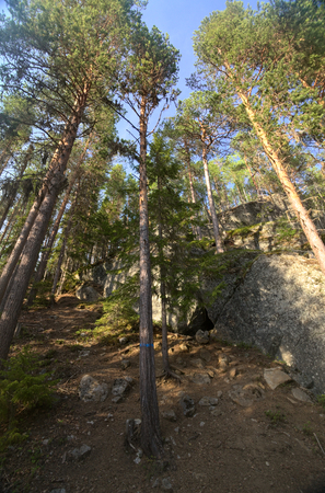ascent: Ascent with cave in the forest at Faangsjoen in Sweden.