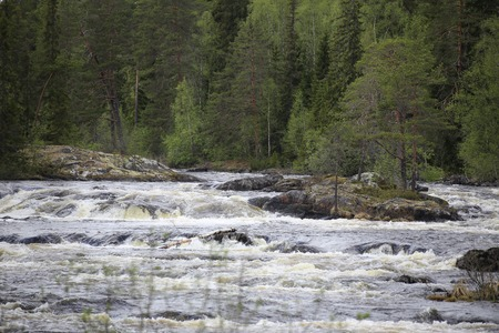 rapids: Rapids on the Swedish river of Ammeraan. Stock Photo