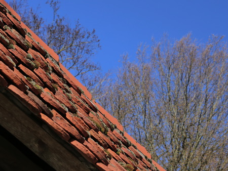 rooftiles: Rooftiles with moss in front of blue sky.