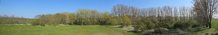 Panorama of Wuestung Spiegelsdorf in Mecklenburg-Vorpommern. The village was abandoned long ago in the 1920s.