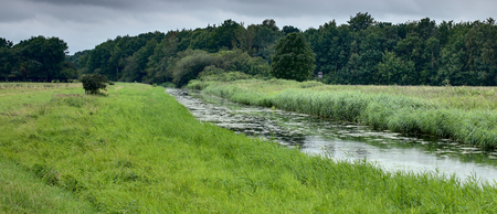 extensively: Extensively used meadows beneath the stream Ryck near Heilgeisthof, Mecklenburg-Vorpommern, Germany.