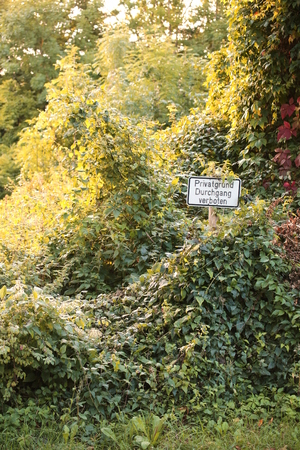 Sign in an overgrown place in Germany. It says Private property, no trespassing. Stock Photo