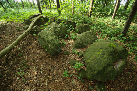 Remains of the megalithic chambered tomb Pustow 1 in Germany.