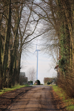 Wind power station behind bare alley in Alt Negentin, Germany.