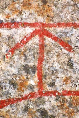 Close up of the Scandinavian rune Tyr from an ancient runestone.
