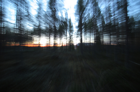 Conceptual shot with motion blur from zooming, in a Swedish forest. Stockfoto