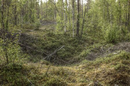 Remains of an ancient trapping pit near at the stream Skelleftalven in Vasterbotten, Sweden. Stok Fotoğraf