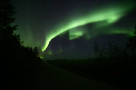 Northern lights over forestscape and road in the night.