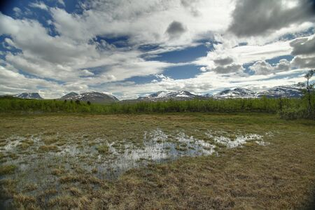 HDR shot of mire near the lake Njakajaure in northern Sweden. 스톡 콘텐츠