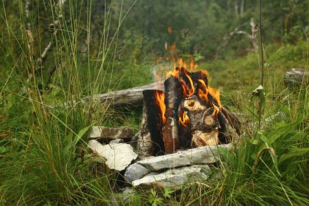Campfire with several pieces of wood in a stone circle.