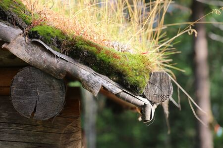 Detail of sod roof in traditional Sami architecture.