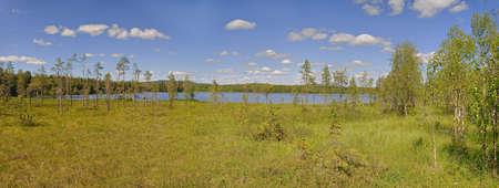 Mires around lake Alktrasket in Vasterbotten, Sweden.