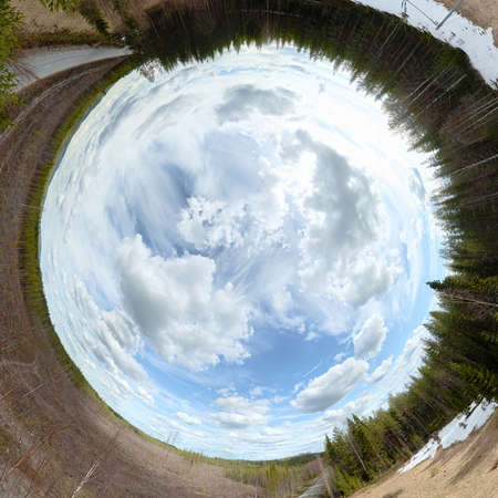 Rabbit hole panorama of forest and clearing in Vasterbotten, Sweden.