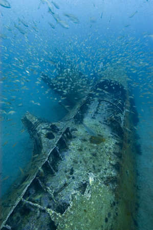 The waters near Monitor National Marine Sanctuary hold the remains of a number of ships sunk during World War II's Battle of the Atlantic-including this German U-boat.