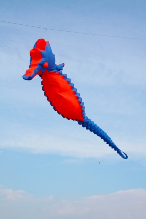 Seahorse kite in the sky in  a windy day Stock Photo
