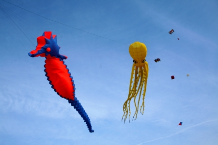 Seahorse and octopus kites in the sky in  a windy day