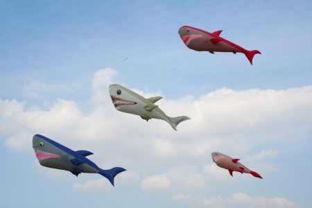Shark kites on a blue sky background, in a sunny day