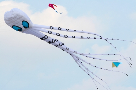 Octopus kite in a sunny day of summer photo