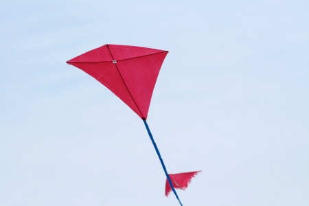 Kite on a blue sky in a sunny day of summer