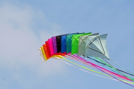 Colored kites in a blue sky, in a sunny day