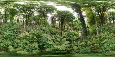 3D spherical panorama with 360 degree viewing angle. Ready for virtual reality in vr. Full equirectangular projection. Old cemetery in summer. Graveyard with green trees Tombs in the forest with grass