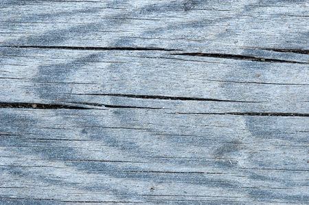 fissure: Texture of aged wooden board