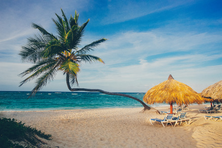 beautiful beach on a sunny day in the Dominican Republic
