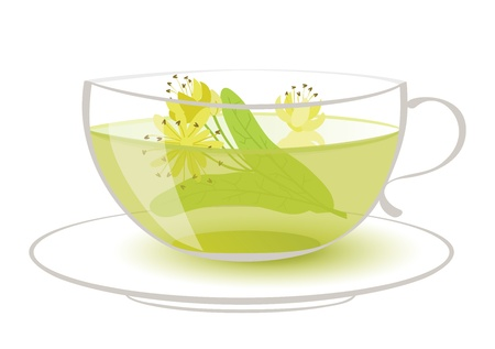 linden tea Vector