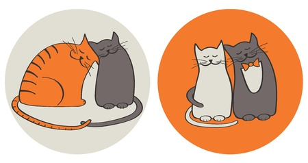 cuddle: cats in love