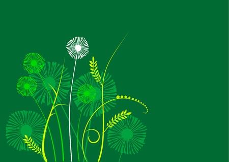 floral background, prairie, garde