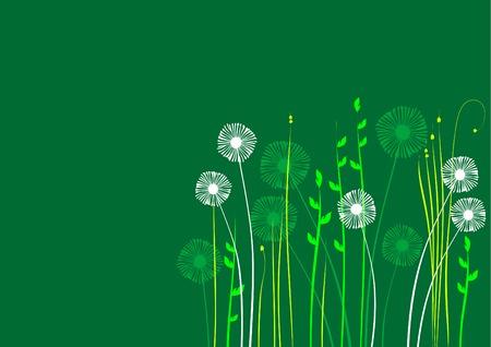 arrière-plan floral, meadow, jardin
