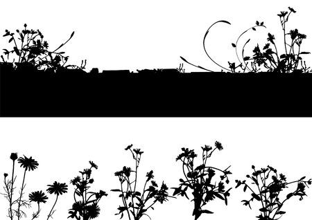 erbe aromatiche: raccolta per i progettisti, impianti vettore Vettoriali