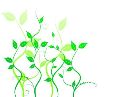 floral background, meadow, garden, grass Stock Vector - 4376688
