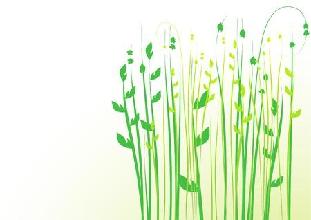 floral background, meadow, garden Stock Vector - 4387379