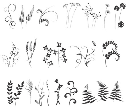 collection, for designers, meadow, plant vector Vector