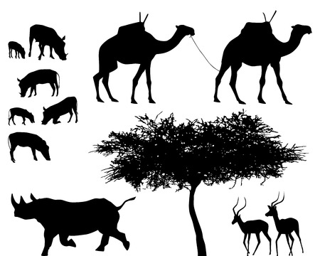 exotic trees and animals, vector set Vector