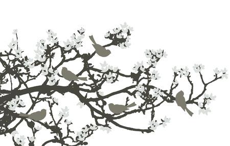 Antecedentes florales, aves