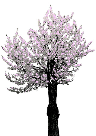 tree with flowers, vector Vector