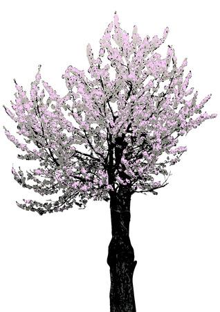 primavera: tree with flowers, vector