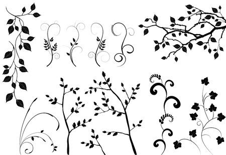 kolekcja dla projektantów, roślin wektora
