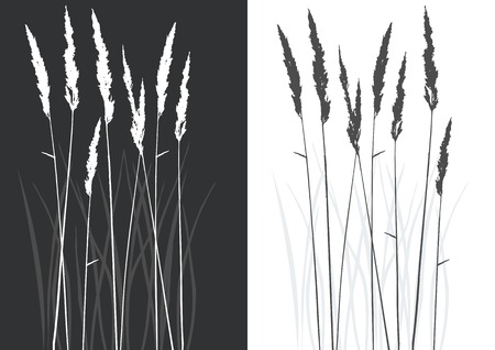 real grass silhouette - vector - two colors Vector