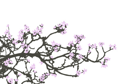 cherry wood: Floral Background, cherry wood
