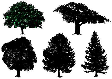 plats: trees - vector set Illustration