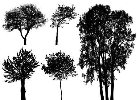 trees - vector set Vector