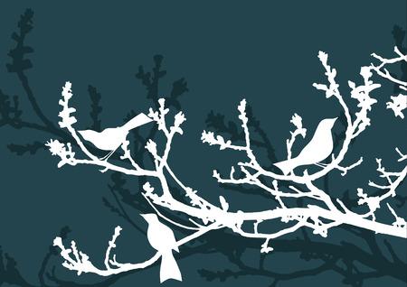 patterns vector: Floral Background, birds Illustration